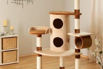 Kratzbaum Betty für Katzen – Erfahrungen und Infos