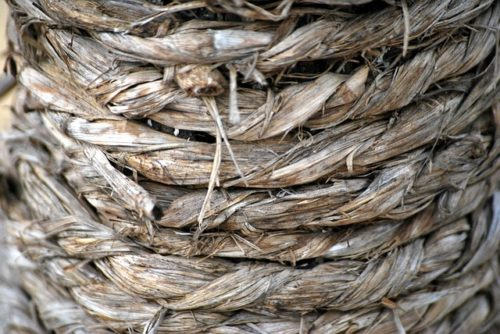 Das äußerst belastbare Material ist ideal für die Krallenwetz-Attakte des Stubentigers