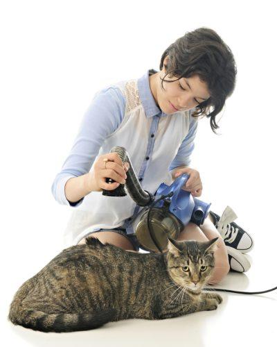 Staubsauger für Katzenhaare