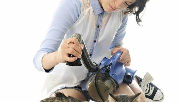 bigstock-A-pretty-young-teen-vacuuming-954660051