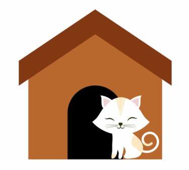 Katzenhütte aus Holz