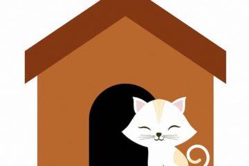 Das Katzenhaus – Perfekter Rückzugsort für Katzen
