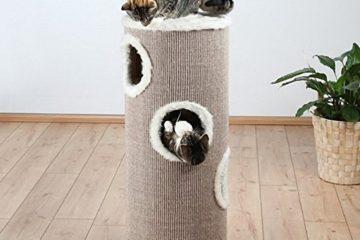 Kratzturm und Kratztonne für Katzen