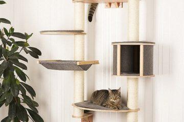 Wandkratzbaum für Katzen – Stilvolle Kratzbäume