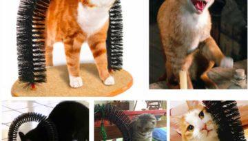massagebogen und enthaarungsbogen für katzen