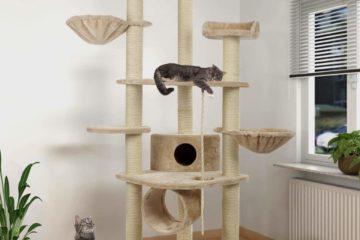 Happypet® Kratzbäume – Alles für das Wohlbefinden der Katze
