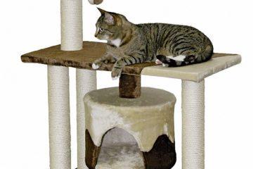 Kerbl Kratzbäume – Formschöne und solide Katzenmöbel