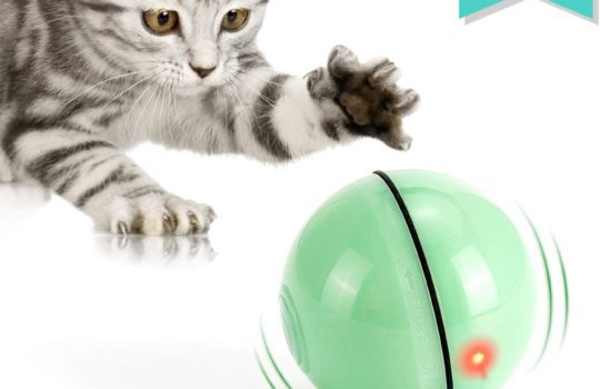 WWVVPET Interaktives Katzenspielzeug Ball mit LED-Licht