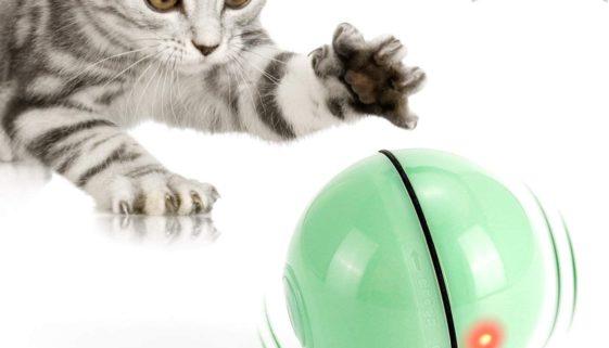 Katzenspielzeug - selbstdrehender Ball mit LED Licht