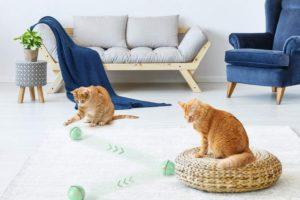 wwvvpet-katzenspielzeug-ball-bild2