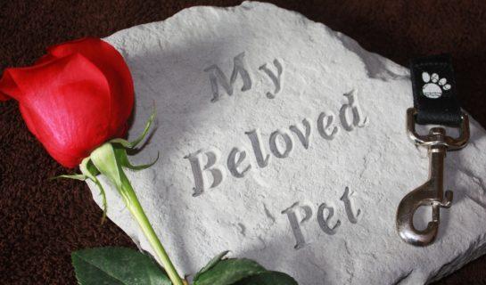 Gedenksteine für Katzen – In liebevoller Erinnerung